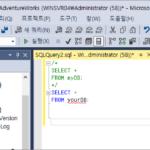 SQL Server 2019 / Query / 주석